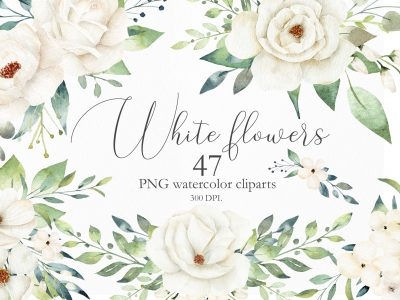 WATERCOLOR WHITE FLOWERS AND...
